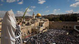Een Joodse man zwaait met zijn loelav over de Oude Stad. Beeld: MJBI